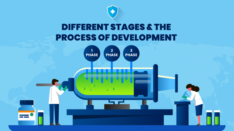 Different stages & the process of development
